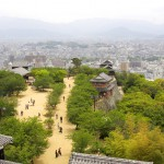 松山市街の風景