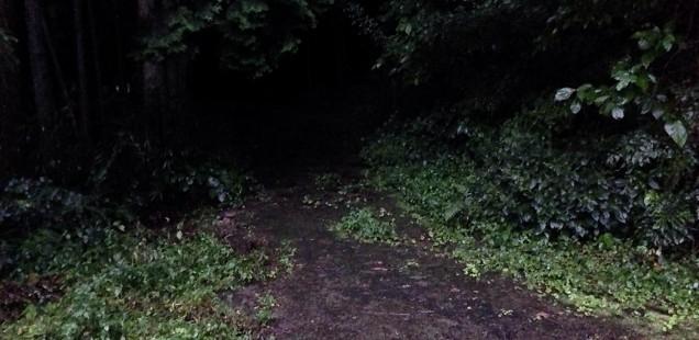 平野の山道