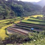 平野の山奥